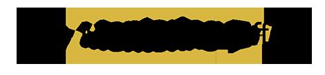 The Mentoring Effect Original Logo for Header